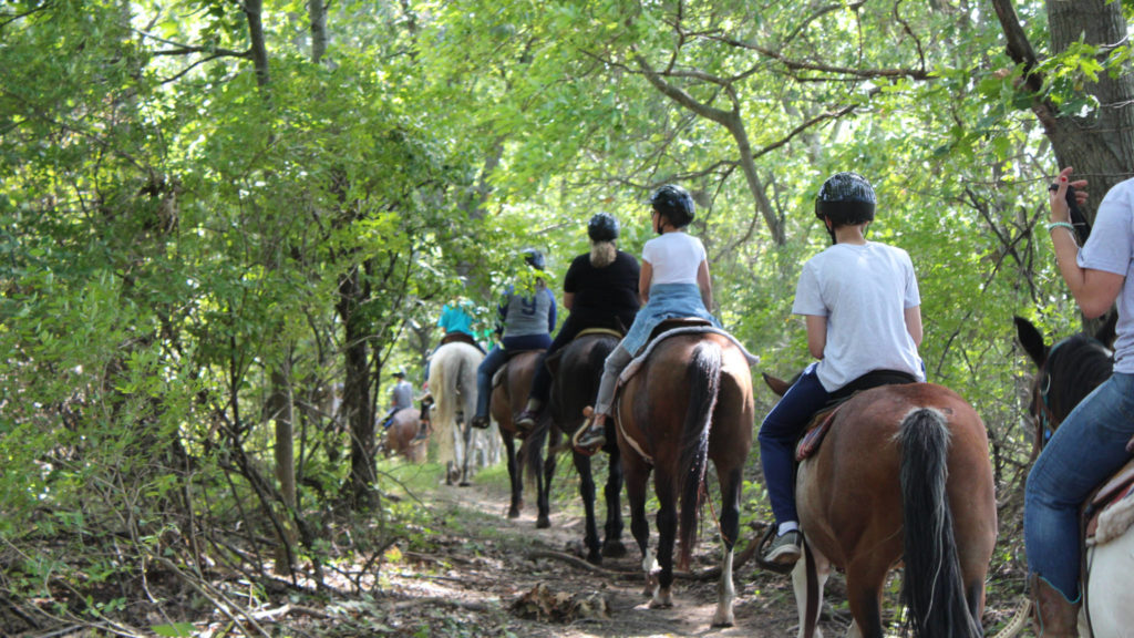 Several people riding through the woods on horseback at Camp